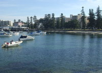 Manly, crystal clear beaches, gourmet cafes at your doorstep.