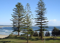 3 Bed Unit across road to patrolled Town Beach.