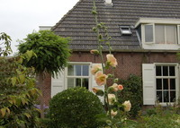LOOKING FOR MAY 2016. Cosy family house,1 hour from Amsterdam.