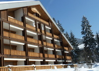 Cosy ski apartment in the Swiss alps, Villars-sur-Ollons