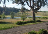 Mudgee - Magic Country Property