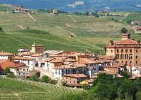 Stunning views in Barolo, Italy.