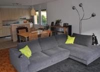 Geneva, large flat ground floor with 3 bedrooms and garden.
