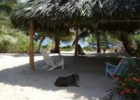 Enjoy Belize at a Beachfront Cottage on Placencia Peninsula
