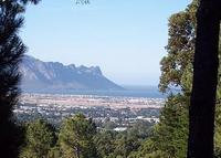 Large family home next to nature reserve 30 mins from Cape Town