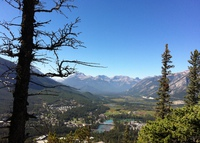 **YES, WE DO LIVE RIGHT IN THE TOWN OF BANFF**