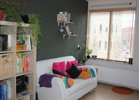 Colorful one- bedroom apartment in the centre of Assen
