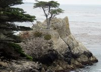 HOME IN PEBBLE BEACH. CLOSE TO  GOLF COURSES, CARMEL AND BEACHUntitled