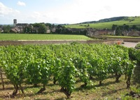 Winemakers house in Pommard, Burgundy