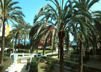 Beach Holidays in Spain  (Valencia)