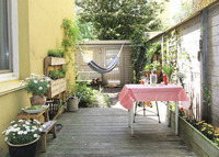 Lovely sunny apartment situated between the Westerpark and the Jordaan