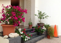 Charming villa in Muscat, Jewel of the Middle East
