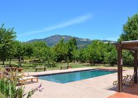 Wine Country Estate with Pool, Vineyard/Mountain Views!