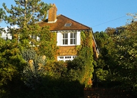 Spacious Guildford family home , nr. London and beautiful countryside