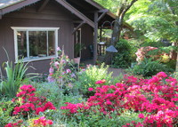 Cottage in the Wine Country--Sonoma Valley