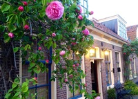 The Garden of Edam (20 minutes from the centre of Amsterdam)