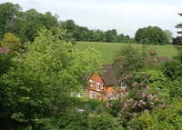 English country home in heart of Surrey North Downs (50 mins London)