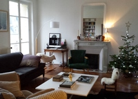 Spacious Parisian flat - Last min, April 26th to May 10th