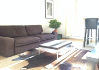 LOVELY FLAT DOWNTOWN PARIS 2 steps from Park of Vincennes