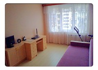 1 bedroom flat  30 min  by  bus from Nevskiy prospect