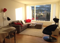 Modern appartment 20 minutes from Lillehammer
