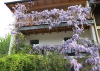 Semi-detached house with garden in Merano, SouthTyrol, Italy