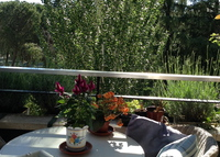 NW Madrid. Lovely 3 bedrooms flat with pool, surrounded by trees