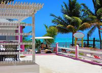 1-BR / 1-BA Apartment, Caye Caulker, Belize: Snorkel, Scuba Dive, Fish
