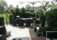Charming 2 bedroom House in the green hart of Amsterdam neighberhood