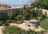 Tranquil seaside garden apartment in popular Kalk Bay Cape Town