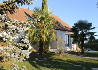 House in the LOIRE VALLEY area (UNESCO Heritage) OPEN FOR JULY 2016