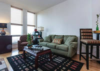 Chicago High Rise, brand new, designer decorated with great views