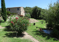Peaceful Farmhouse in the wilds of Tuscany, Italy